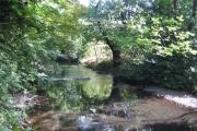 River Crane in Cranford Park