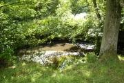 The River Dove near the Daffy Cafe in Farndale