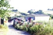 Approach to Liveridge Farm