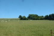 Farmland near Fachwen