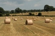 Straw bales, Raughton Head