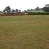 Farmland, Middleton