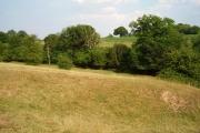 Upton Brook