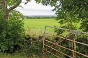 Farmland near Conygree Farm