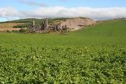 Waulkmill Quarry