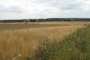 Crops Harvested, Straw Baled