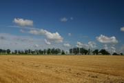 Farmland west of Ixworth