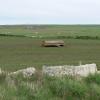 Farmland on Stronsay