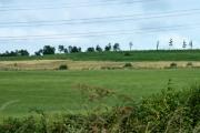 Farmland near Boarstall, Bucks