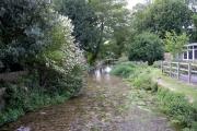 River Test, Overton