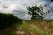Bridleway to North Common