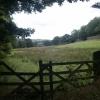 Pasture, Hayfield