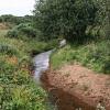 Stream on Goss Moor
