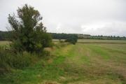 View towards Jackdaw's Castle from near Cutsdean