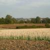 Farmland near Long Buckby