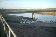 The George Birnie Memorial Bridge