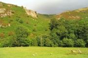 Rocky outcrop near Pont y Meibion