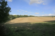 View across farmland from footpath at Duke's Drive