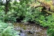 River Loy, Glen Loy