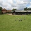 Raffin Green Farm