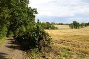 Stubble east of Field Mill Lane