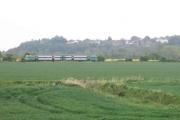Fertile land, Winchelsea