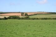Mixed Farmland