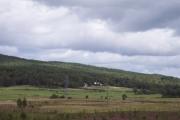 Woods at Drumullie
