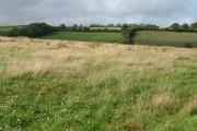 Cheriton Fitzpaine: near Moor View
