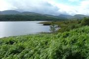 Shoreline of Loch Garry