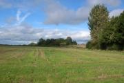 Farmland near Ferrensby