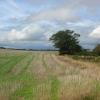Farmland off Ferrensby Bridleway