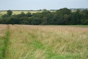 Rackenford: on Tidderson Moor