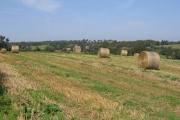 Ells Farm from Ells Lane