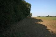 Farmland near Shelton