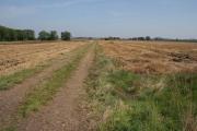 Farmland off Cotgrave Lane, Tollerton
