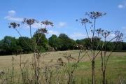 Fields west of Bagmore