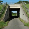 Footpath under A50
