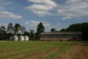 Farm buildings at Drinkstone Park