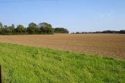 Field south of Squids Gate Lane