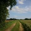 Track at Brook Farm, Beyton