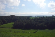 View over Hexhamshire from Newbiggin Hill