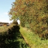 Upper Farm, Garsington, and bridleway