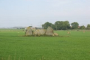 South Leylodge Stone Circle