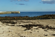 Balintore harbour and beach