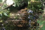Afon Alyn