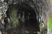 Gwynfynydd Gold Mine, Ganllwyd