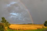 Rainbow Walpole Lane